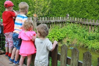 Abbildung: Mehrere kleine Kinder schauen über einen Zaun in einen Teich